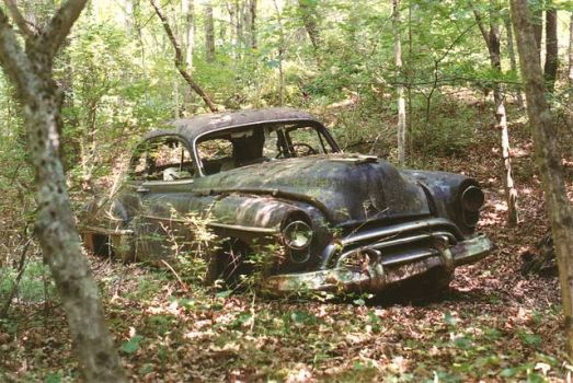 old car in the woods+3-