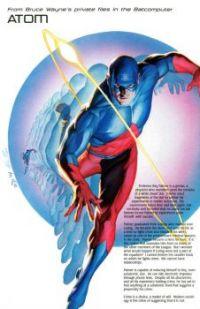 My Favorite Superhero AKA The Atom by Alex Ross