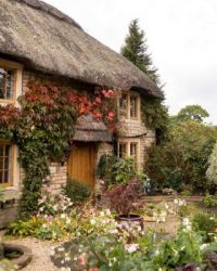 Thatched Cottage #3