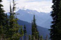 On Mount Revelstoke