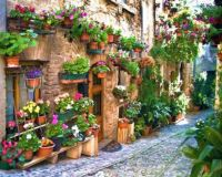 Narrow street in Spello, an ancient town in the province of Perugia, Umbria, Italy