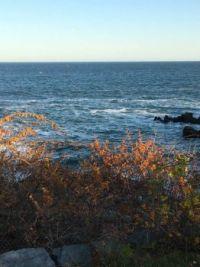 Beautiful Cape Cod