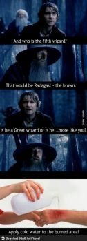 bilbo burns gandalf