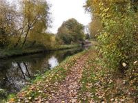A cruise along the Staffordshire and Worcestershire Canal, Stourport to Great Haywood Junction (701)
