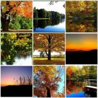 Fall Landscapes small