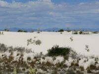 White Sands Nat. Monument, New Mexico, USA