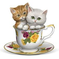 Kittens in a teacup