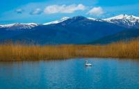 "Themes ""National Parks"" - Greece, Prespes Lakes"