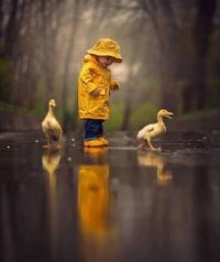 Fun in the puddles..!