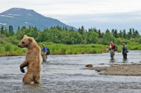 AlaskaMain1