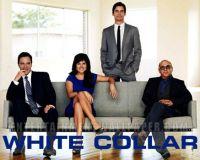 White-Collar-1