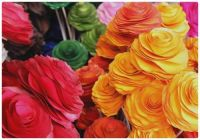 The Colours of Artificial Roses