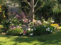 IMG_2653 I so love Spring