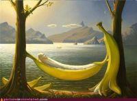 Life in Bananalanda.