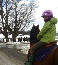 Sam and Horses 4