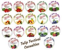 Tulip Festival Casualties