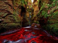 blood river, gartness, scotland