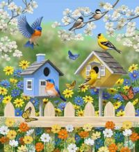 Birds in their houses