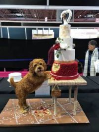 2018 International Cake competition (dog is part of cake)
