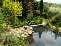 část zahrady 2