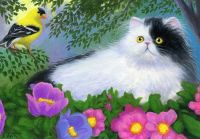 Persian cat and goldfinch bird