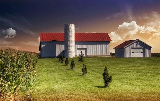 Rustic Barn - Champaign County, Ohio