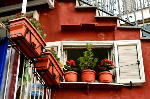 window garden