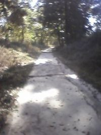 part of Lamb's Creek trail