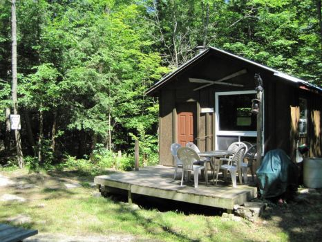 The Bunkie