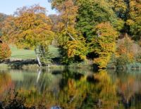 Fonthill Lake Wiltshire