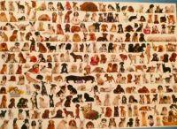 1000 piece Dog puzzle