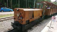 Oravská lesní železnice-Stanice Tanečník
