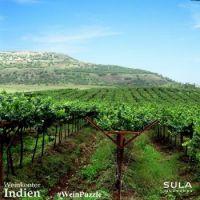 #WeinPuzzle - Sula vineyards (6)