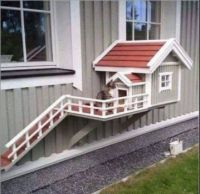 house for cat
