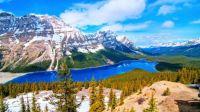 Peyto Lake - Alberta