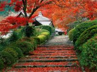 Garden staircase, Kyoto (Japan)