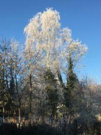Grenchen im Winter