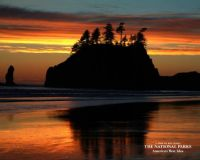 Sunset on the Pacific, Olympic National Park