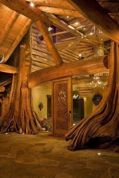Best log cabin ever