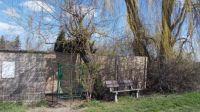 lavička pod stromy