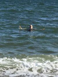 Me swimming on Cape Cod