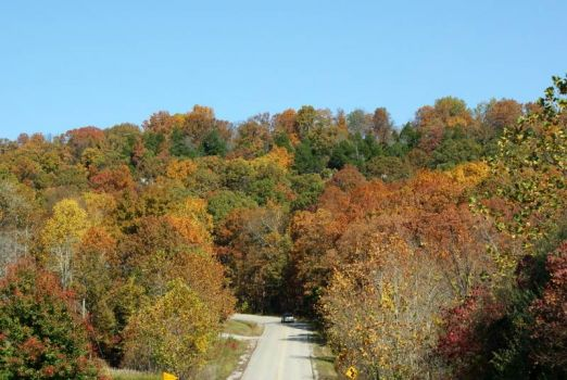 The road to Garden of the Gods ~ Southern Illinois