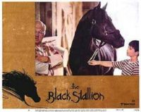 THEME:  Movies   The Black Stallion - the first of Walter Farley's books to be made into a movie