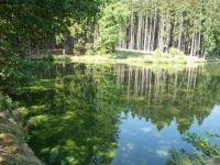 Rybník Stýskal u Meziříčka (okres Třebíč)