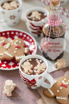 Homemade gingerbread hot cocoa