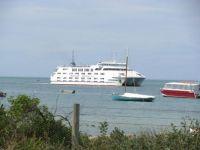 Queenscliff-Sorrento Ferry