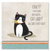 Crazy About my Cats!!