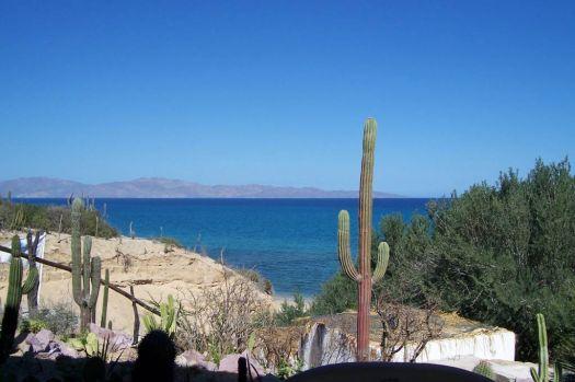 Palapas Ventana, Sea of Cortez