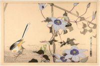 Bird On Ground And Flowers