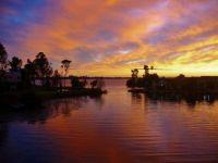 Gold and purple dawn